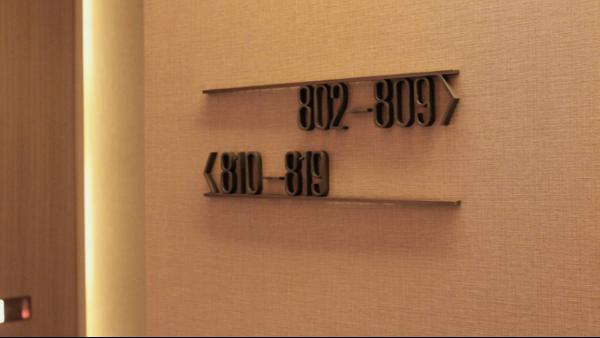 国内五星级酒店导向标识常见类型「景观」