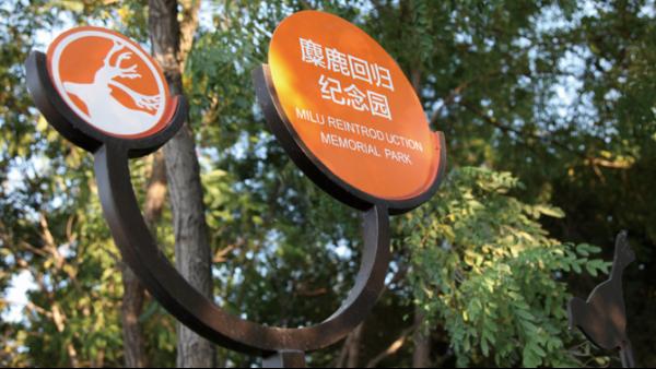解析景区标识标牌使用如何优化